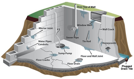 how water gets in to the basement to allow for the growth of basement mold