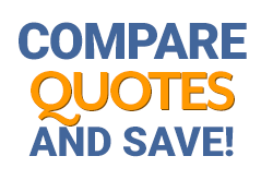 compare mold removal quotes and save