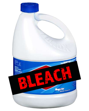 use bleach as a mold removal product