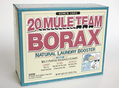 how to get mold out of clothes with borax