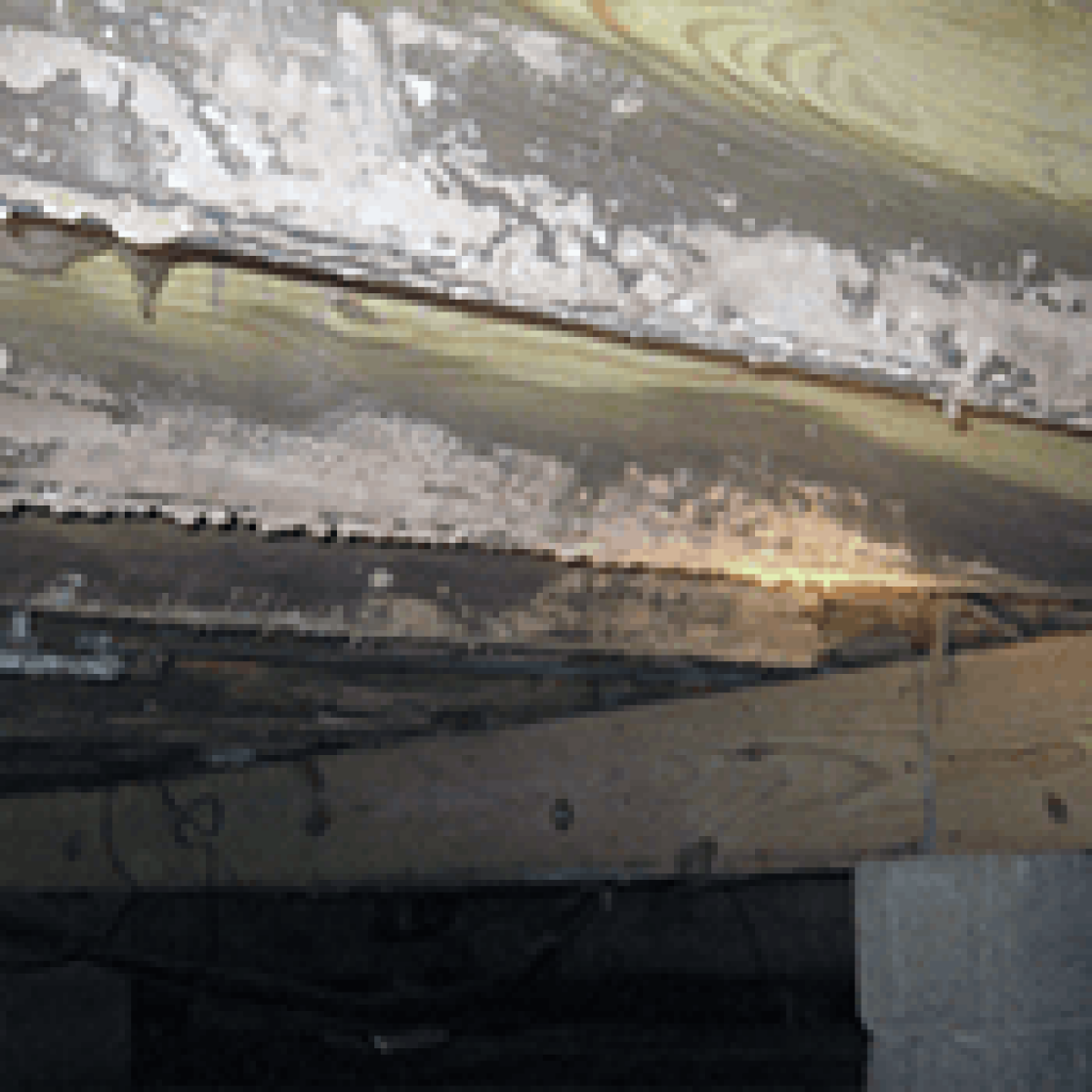 Mold On Floor Joists How To Remove Mold From Wood Mold