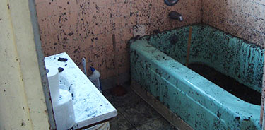 Black Mold Removal And The Most Common Places Find