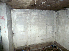 image of mold on concrete and cinder block walls