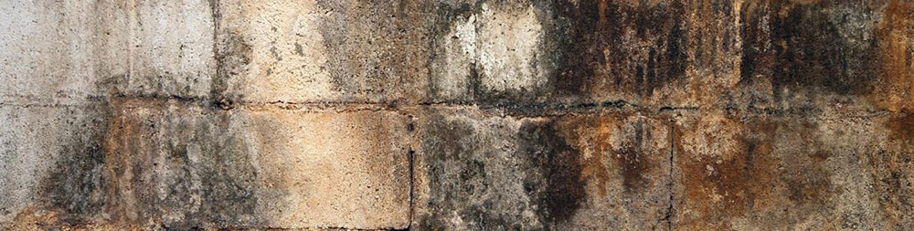How To Remove Mold From Tile Grout And Concrete